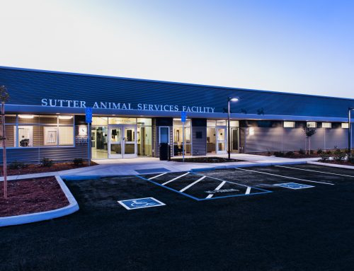 Sutter Animal Services Facility